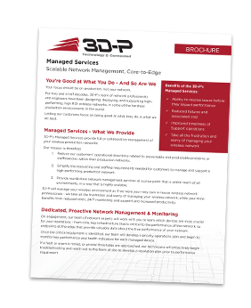 3D-P-Managed-Services