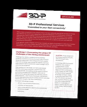 3D-P-Professional-Services